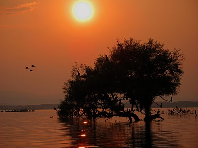 Ηλιοβασίλεμα στη λίμνη Κερκίνη